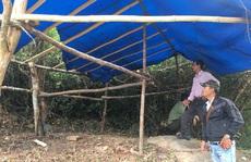 Bình Định: Đề nghị điều tra vụ đánh cán bộ, đốt cháy lán trại bảo vệ rừng