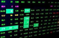 HOSE và nhiều công ty chứng khoán đồng loạt 'bảo trì hệ thống'
