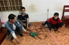 Bắt giữ 3 kẻ trộm cáp điện trên cao tốc TP HCM - Long Thành - Dầu Giây
