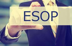 Thưởng 'đậm' bằng cổ phiếu ESOP: Ai hưởng lợi nhất?