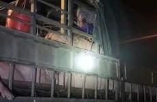 Gần 20 người trốn trên xe tải chở lợn 'thông chốt' kiểm soát dịch Covid-19