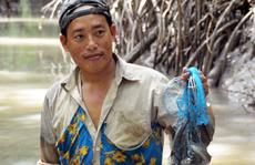 Trải nghiệm thú vị ở rừng ngập mặn lớn nhất Việt Nam