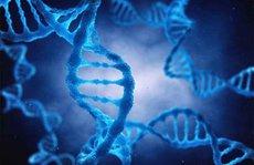 Một đại dịch virus corona bí ẩn tấn công châu Á từ 25.000 năm trước