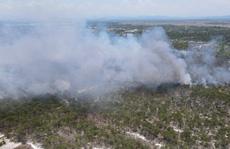 Quảng Nam: Hơn 100 người chữa cháy rừng giữa cái nắng 40 độ