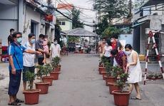 Cuộc thi chăm sóc cây trong xóm cách ly