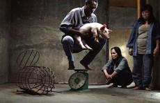 Phim 'Vị' bị cấm phổ biến ở Việt Nam