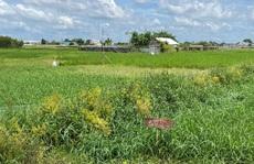 TP HCM kiến nghị 'cởi trói' gần 700 ha đất