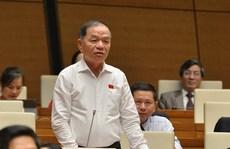 Đại biểu Quốc hội Lê Thanh Vân đề cập tới vụ 'bánh mì không phải thực phẩm thiết yếu'