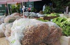 Nguồn cung nông sản tiếp tục tăng