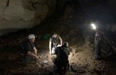 Kinh ngạc 'hầm mộ' 700 tuổi với 28 người đã... phẫu thuật thẩm mỹ