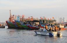 Đà Nẵng gỡ vướng cho 55 tàu cá mắc kẹt tại cảng Thọ Quang do dịch Covid-19