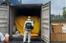 Khởi tố vụ buôn lậu gỗ giáng hương từ Ấn Độ về cảng Đình Vũ