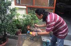 Hoạ sĩ bán tranh lấy tiền giúp trẻ em vùng dịch