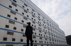 Trung Quốc xây 'khách sạn heo' 13 tầng để ngăn dịch bệnh