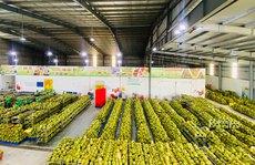 Giúp doanh nghiệp khôi phục sản xuất - kinh doanh (*): Cần sự hỗ trợ thiết thực