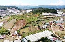 Khốn khổ vì dự án đô thị 'treo' 12 năm ngay trung tâm Đà Lạt