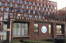 Trung Quốc chỉ trích báo cáo Covid-19 'có như không' của tình báo Mỹ