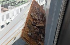 Clip: Thót tim với cảnh xử lý sự cố từ tầng 21 một tòa nhà ở trung tâm TP HCM