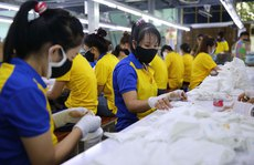 Nên chi quỹ bảo hiểm thất nghiệp hỗ trợ người lao động