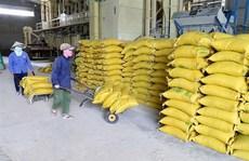 Đẩy mạnh thu mua lúa gạo, xuất cấp gạo hỗ trợ người dân