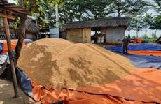 Tài xế trộm gần 60 tấn bắp hạt của công ty