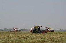 Các tỉnh giúp nhau thu hoạch lúa