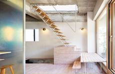 Căn nhà dành riêng cầu thang cho cây xanh