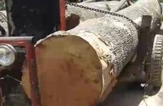 40 đối tượng bao vây lực lượng bảo vệ rừng, cướp tang vật