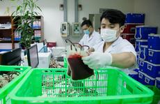 Gần 3.000 đơn vị máu 'lên đường' để điều trị cho bệnh nhân Covid-19