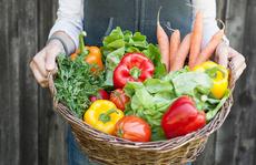 Chế độ ăn cho bệnh mạn tính không lây