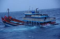 Tàu Cảnh sát biển xuyên màn đêm liên tiếp ứng cứu 2 tàu cá ngư dân gặp nạn ở Lý Sơn