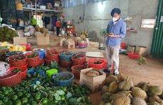 Nông dân lo lắng vì yêu cầu tạm dừng mua bán sầu riêng, bơ khi đang thu hoạch