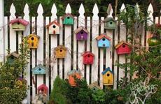 Ý tưởng trang trí hàng rào độc đáo