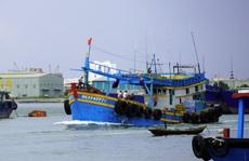 2.700 ngư dân 'kẹt' ngoài biển sắp được tiếp tế lương thực, nhiên liệu