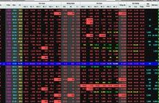 Chứng khoán toàn cầu chao đảo: Nhà đầu tư Việt lo lắng