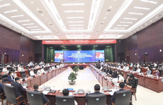 Đà Nẵng: Nhiều doanh nghiệp đề nghị bỏ giấy đi đường