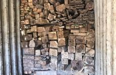 Lật tẩy bí mật trong 7 xe container chở gỗ, đá quý từ Lào