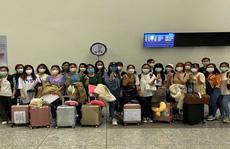 Bất chấp dịch bệnh, điều dưỡng Việt Nam vẫn sang Đức, Nhật làm việc