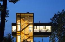 Ngôi nhà trong suốt giữa rừng cây