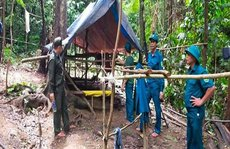 Đà Nẵng: Làm rõ nhóm người vào rừng lập lán trại, khai thác vàng trái phép