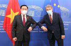 Đề nghị Nghị viện Châu Âu hỗ trợ, chia sẻ vắc-xin, thuốc điều trị Covid-19