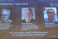 Nobel Hóa học trao cho 3 nhà khoa học nghiên cứu về cơ chế tự phục hồi DNA