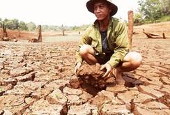 Ghi nhanh:  Đắk Lắk – Tây Nguyên: Những cơn khát nước triền miên…