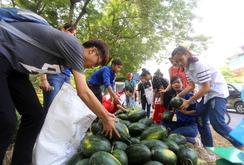 Bàn tròn doanh nhân: Đầu ra cho nông sản Việt