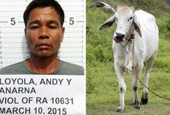 Philippines bắt giữ kẻ cưỡng hiếp hàng loạt động vật