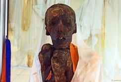 Xác ướp thiền sư 500 tuổi trên dãy Himalaya