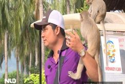 Phóng sự: Đến với Đảo khỉ, chơi đùa… với khỉ!