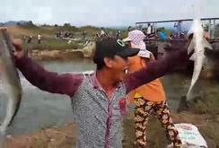 Clip: Người dân Bình Thuận thi nhau bắt cá dưới đập thủy lợi