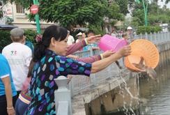 Không phóng sinh cá xuống kênh Nhiêu Lộc-Thị Nghè