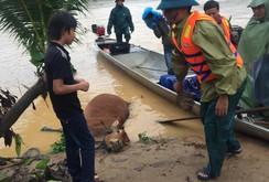 Ghi nhanh: Lũ lớn đang đe dọa Quảng Bình